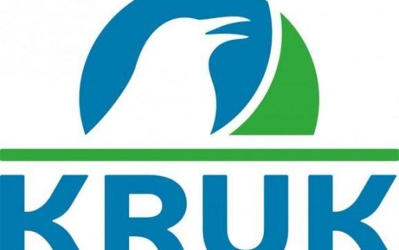 De ce sa optezi pentru plata datoriilor cu ajutorul Kruk Romania?
